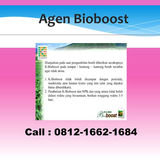 Profile for Jual Bioboostklink