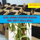 Profile for Jual vanili Terbaik