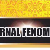 Jurnal FENOMENA