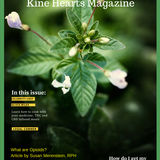 Profile for KINE HEARTS MAGAZINE