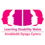 Profile for Learning Disability  Wales