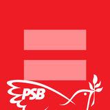 LGBT Socialista PSB