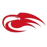 Liberty Ledger magazine