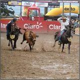 Profile for Llanoalmundo Villavicencio Meta