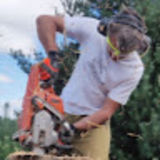 Profile for LYOFOOD