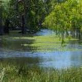Profile for Mallee Catchment Management Authority