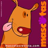 Profile for Mascotas Revista