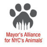 Profile for Mayor's Alliance for NYC's Animals