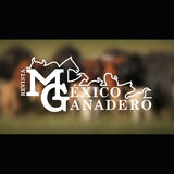Profile for México Ganadero