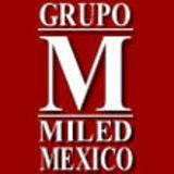 Profile for Grupo Miled