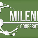 Profile for Milenio Cooperativo - Abasto