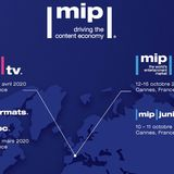 Profile for mipmarkets