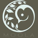 moola.dk