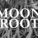 Profile for moonrootzine
