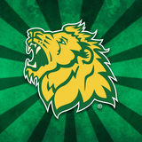Profile for Missouri Southern State University