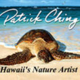 Profile for Patrick Ching