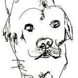 Profile for no barking aRt