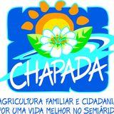 Profile for ONGChapada