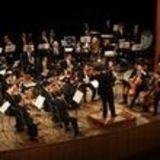 Profile for Orquestra MT