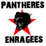 Profile for Panthères Enragées