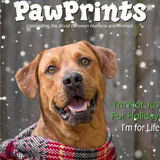 Profile for PawPrints Magazine