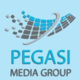 Profile for pegasi media group
