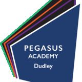 Profile for Pegasus Academy