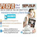 Profile for PERFIL DEL SURESTE