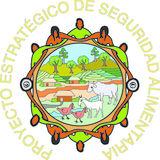 Profile for PESA México