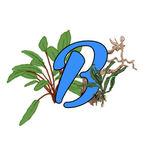 Profile for Biotope Aquarium Magazine
