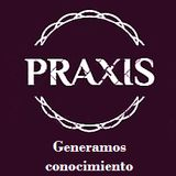 Profile for praxisconsulting5