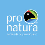 Profile for pronaturapeninsuladeyucatan