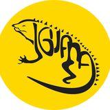 Proyecto Iguana ORG
