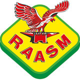 Profile for Raasm SpA