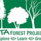 IITA FOREST PROJECT