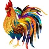 Profile for Rehab India Foundation