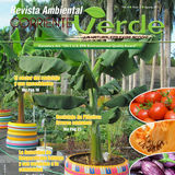 Profile for Revista Ambiental Corriente Verde