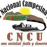 Profile for Coalición Nacional Campesina y Urbana A.C.