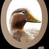Profile for Quetru Quetru