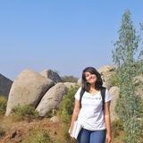 Profile for rohininayyar