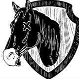 Profile for sam revivo