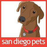 Profile for San Diego Pets Magazine