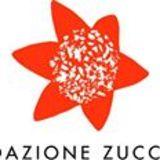 Profile for Santina Zucchelli