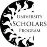 University Scholars Program