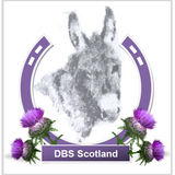 Profile for Scottish Donkeys