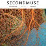 Profile for SecondMuse