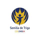 Profile for Semilla de Trigo Colombia