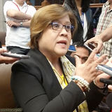 Profile for senatorleilam.delima