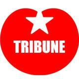 SP-Tribune