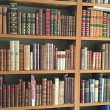 Ken Spelman Books Ltd ~  [Tony Fothergill]